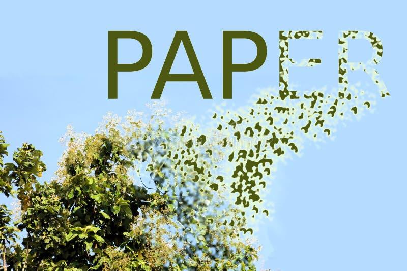Desflorestamento para a factura de papel fotos de stock
