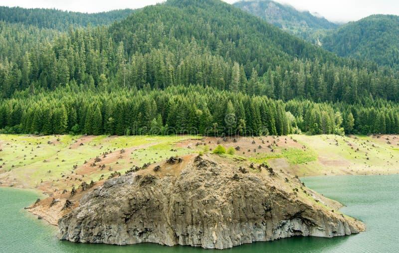 Desflorestamento que aumenta em America do Norte imagens de stock royalty free