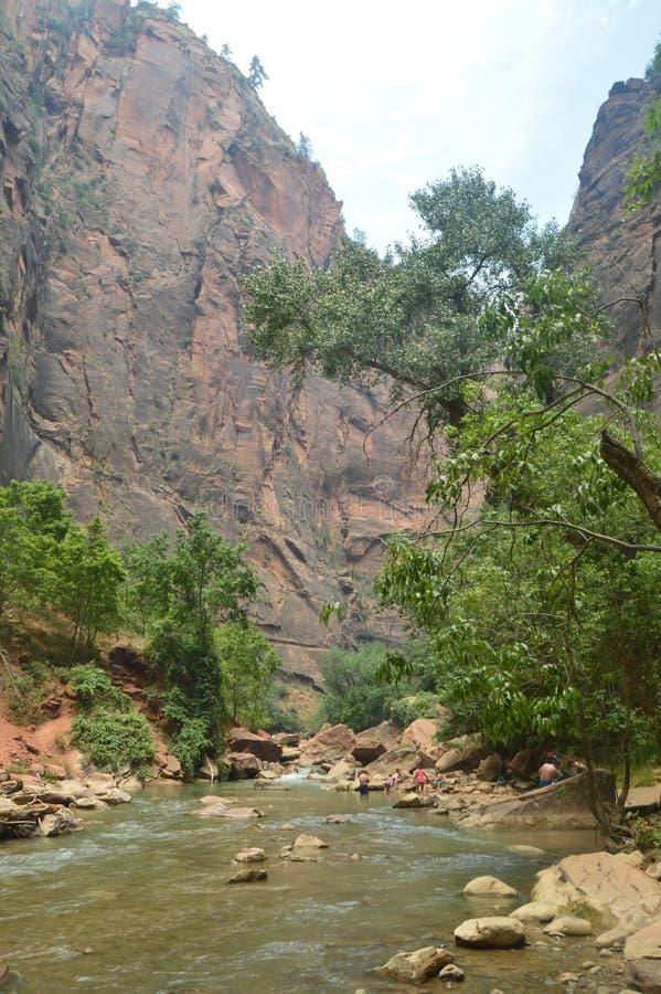 Desfuladero piacevole con un fiume sinuoso pieno degli stagni di acqua in cui potete prendere un buon bagno nel parco di Zion Via fotografie stock