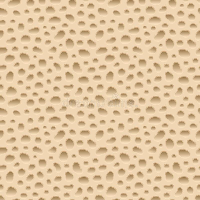 Deshuese la estructura esponjosa, modelo inconsútil del vector de la estructura del hueso libre illustration