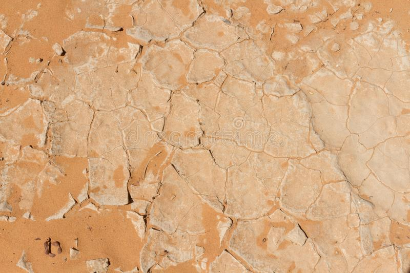 Cracked dry earth texture royalty free stock photos