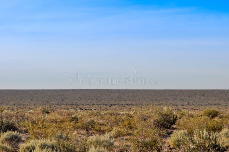 Desierto árido de La Pampa, la Argentina fotos de archivo