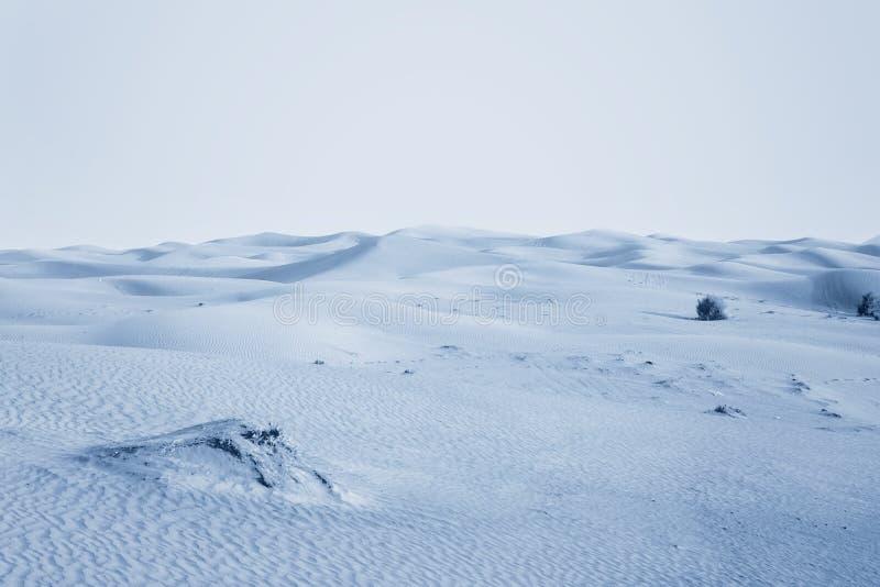 Desierto ártico imagen de archivo