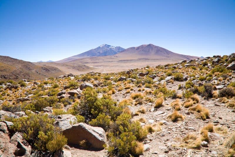 Desierto, Bolivia fotos de archivo