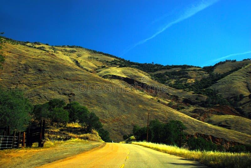 Desierto California del valle de la yuca del camino del árbol foto de archivo