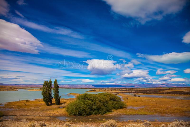 Desierto chamuscado plano amarillo en Patagonia fotos de archivo