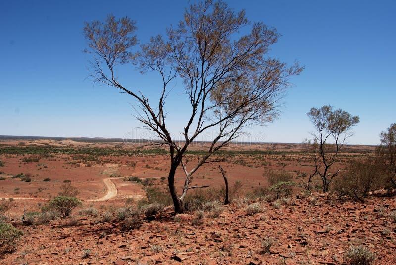 Desierto de Alice Springs imagenes de archivo