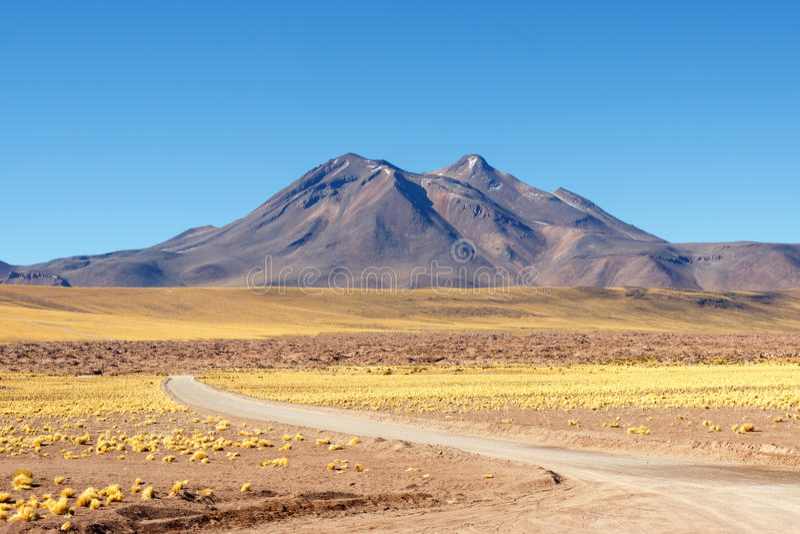 Desierto de Atacama imagenes de archivo