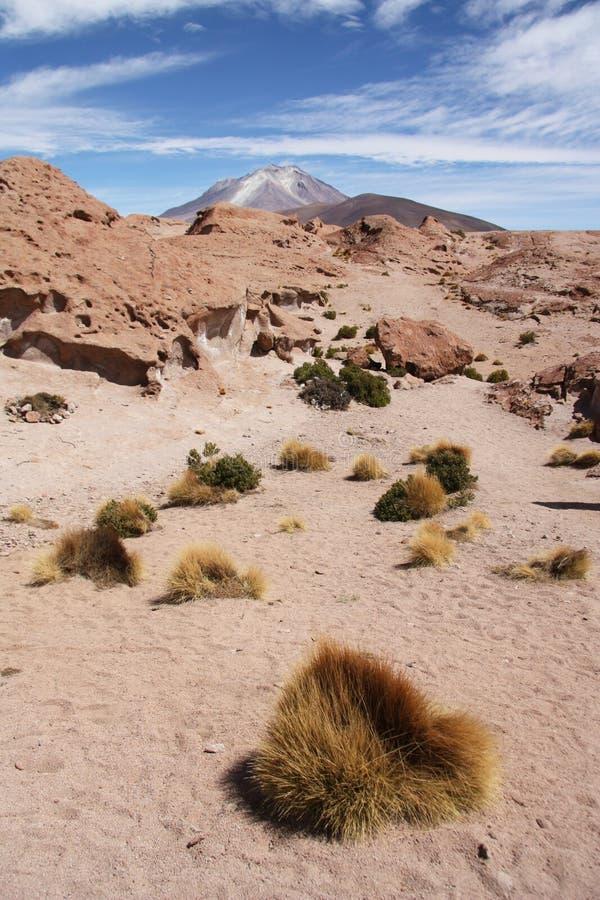 Desierto de Atacama con el volcán de Ollague, Bolivia imágenes de archivo libres de regalías
