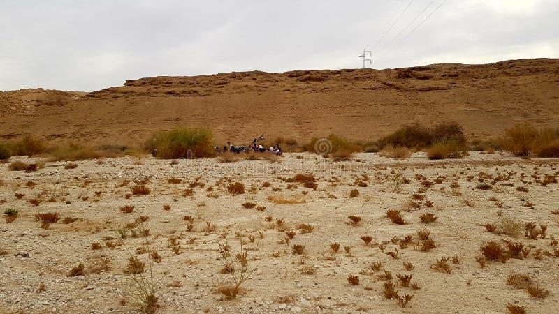 desierto de la naturaleza del paisaje de la tierra de la foto del aire fresco foto de archivo libre de regalías