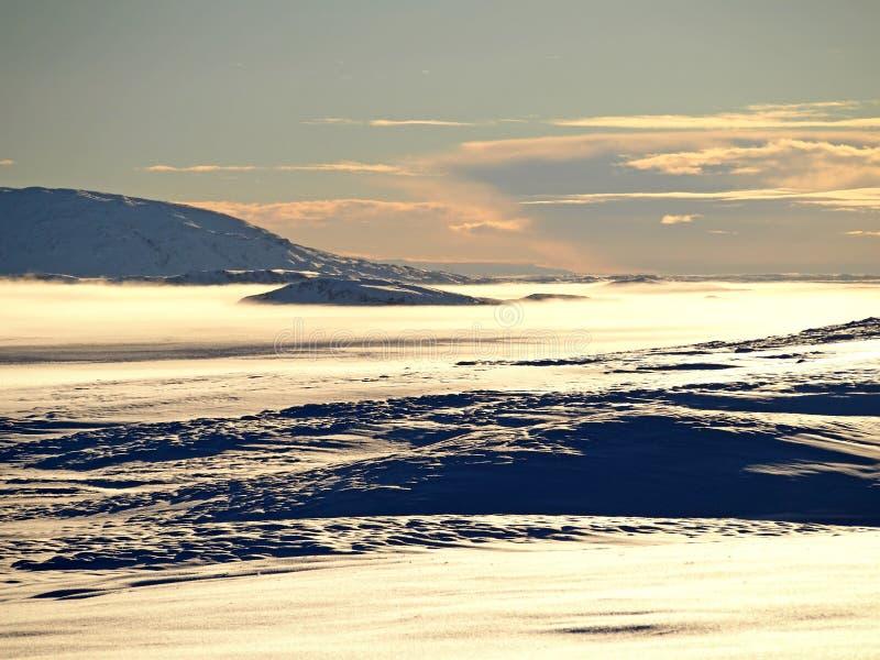 Desierto de la nieve fotografía de archivo libre de regalías