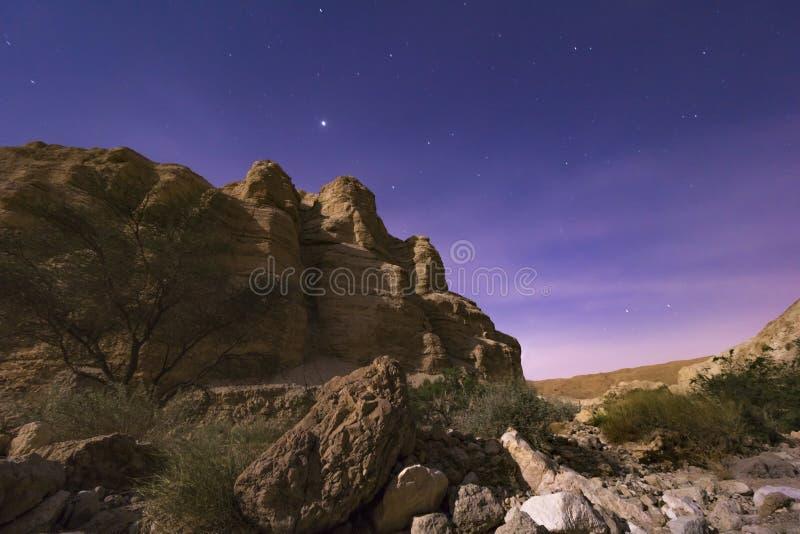 Desierto de la noche foto de archivo