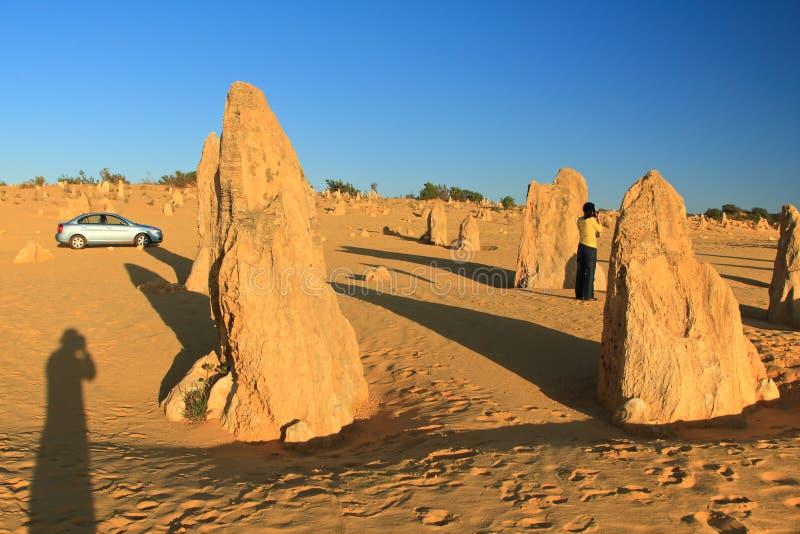 Desierto de los pináculos, Australia occidental imagen de archivo libre de regalías