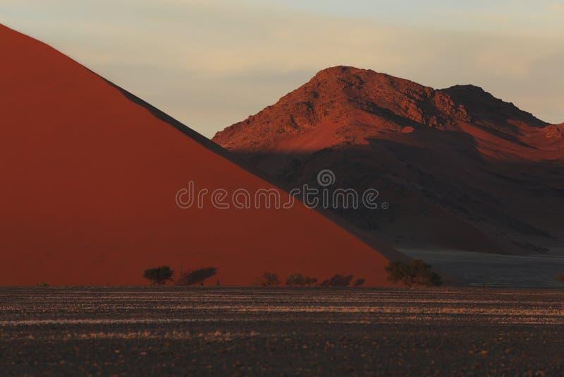 Desierto de Namib Namibia fotos de archivo