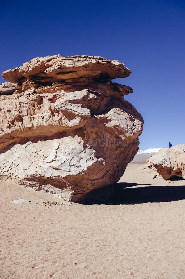Desierto de piedra en Bolivia fotografía de archivo