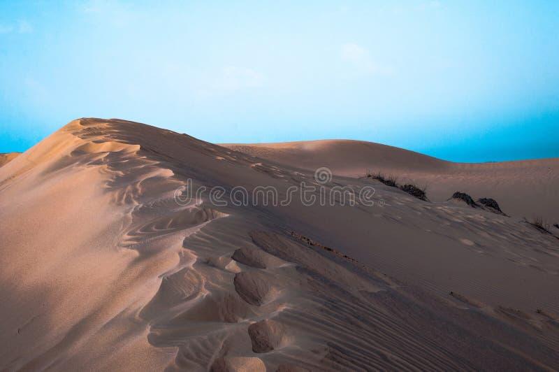 Desierto de S?hara imagen de archivo