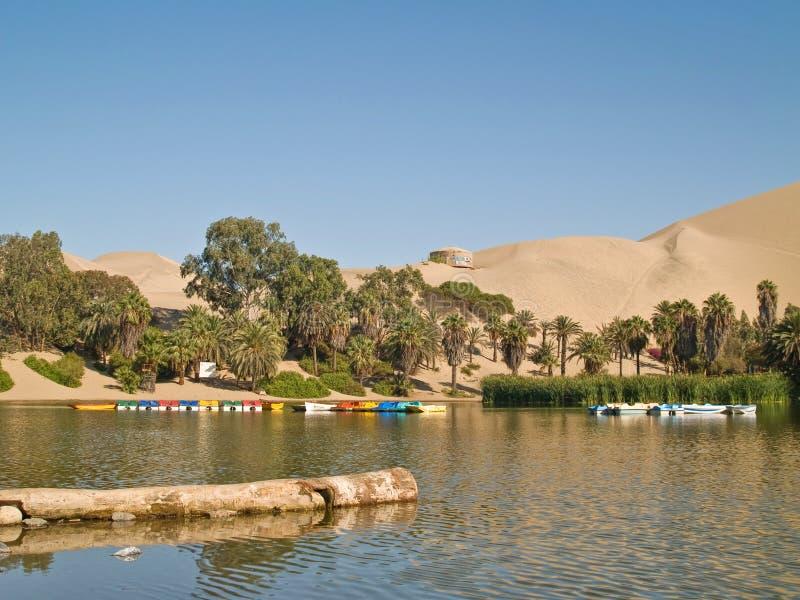 Desierto del AIC, Perú fotos de archivo libres de regalías