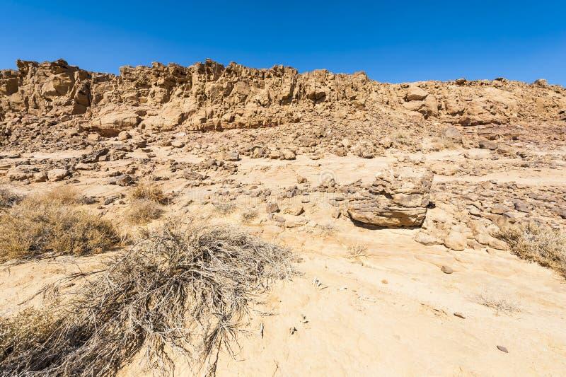 Desierto del N?guev en Israel foto de archivo libre de regalías