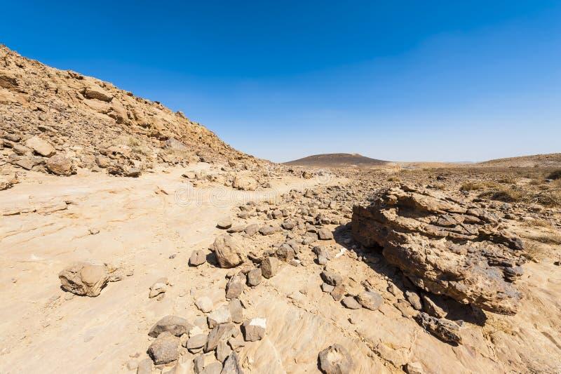Desierto del N?guev en Israel imagen de archivo