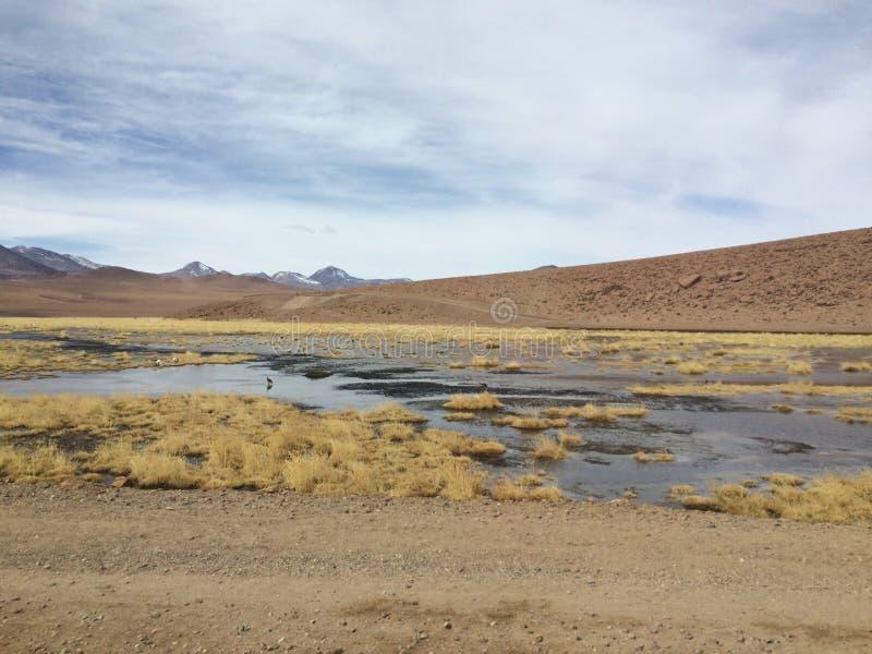 Desierto del ` s Atacama de Chile imagen de archivo