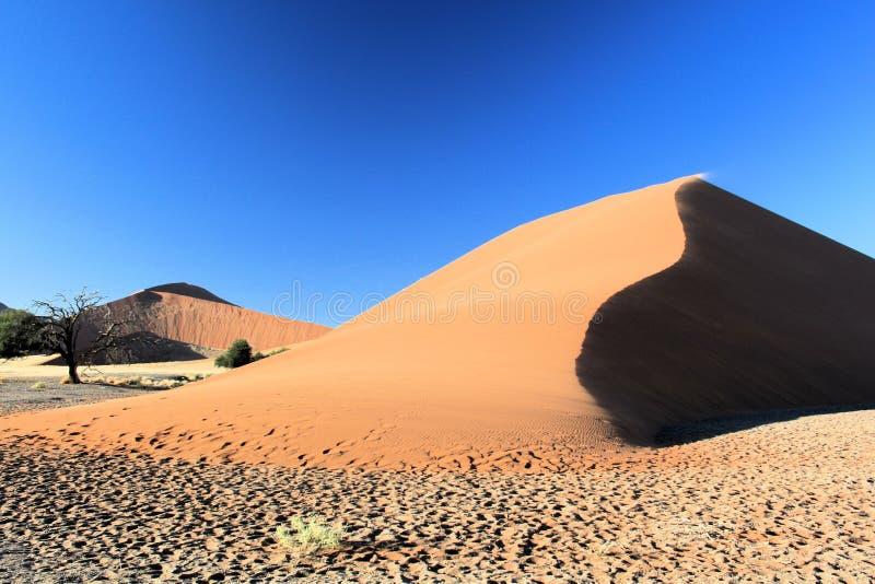 Desierto namibiano fotos de archivo libres de regalías