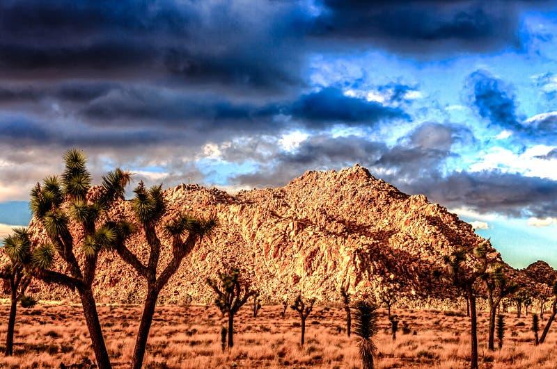 Desierto y cielos oscuros en el desierto imagenes de archivo