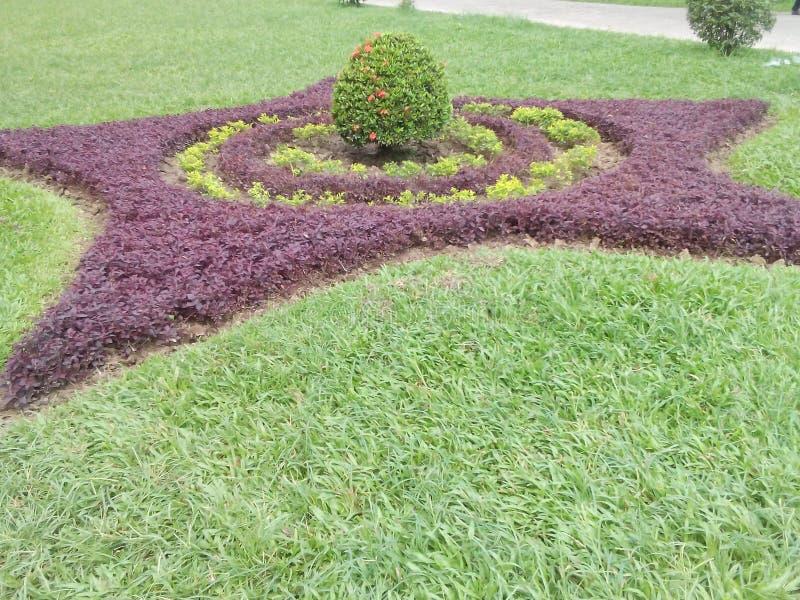 Design av naturen som göras av människan royaltyfri foto