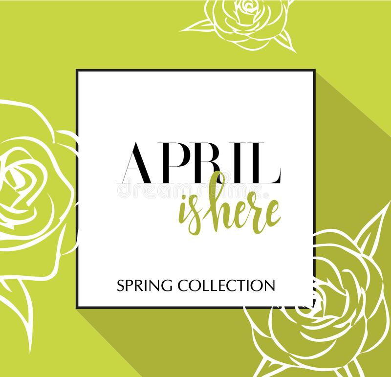 Design banner with lettering April is here logo. Green lime Card for spring season with black frame and wthite roses. Promotion stock illustration