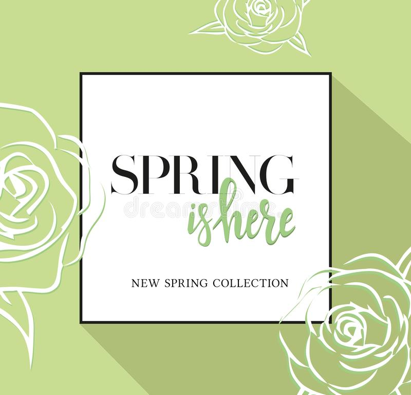 Design banner with lettering spring is here logo. Greenc ard for spring season with black frame and rose. Promotion offer with vector illustration