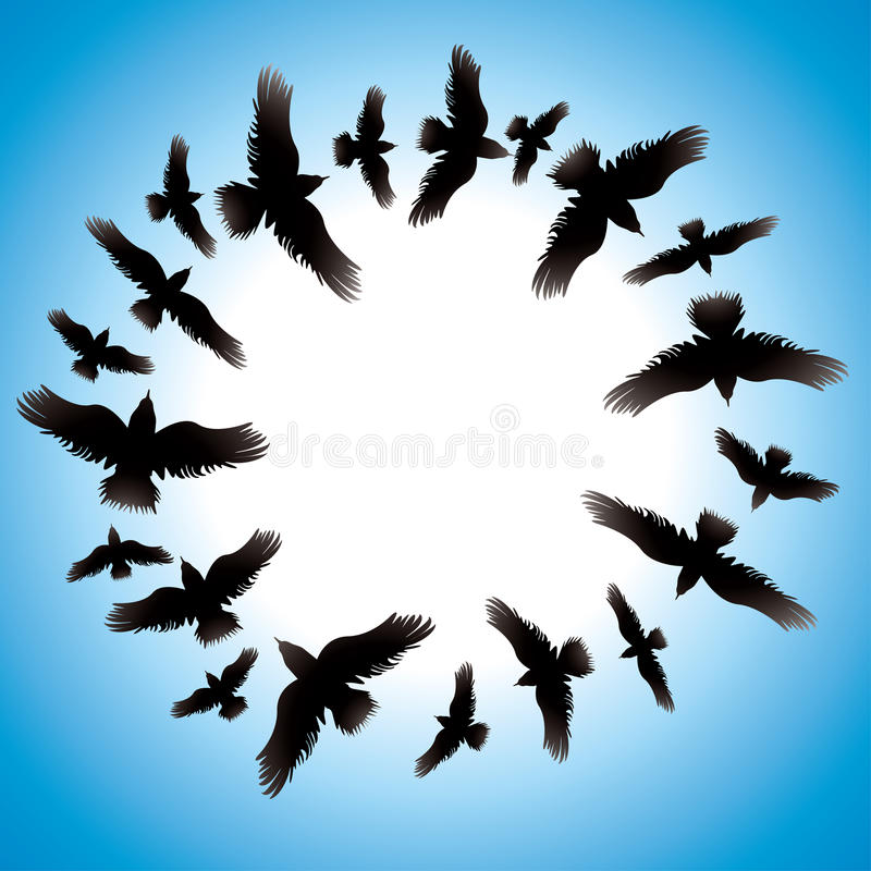 Design With Birds. Stock Photography