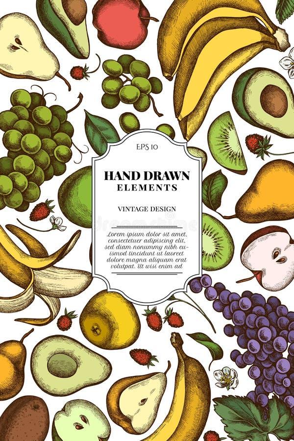 Design de carte avec les pommes colorées, poires, avocat, kiwi, raisins, bananes, fraise illustration libre de droits