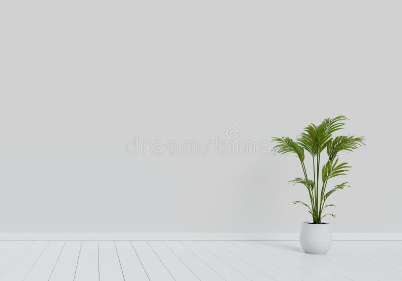 Design de interiores moderno da sala de visitas com o potenci?metro natural da planta verde no assoalho de madeira lustroso branc ilustração royalty free