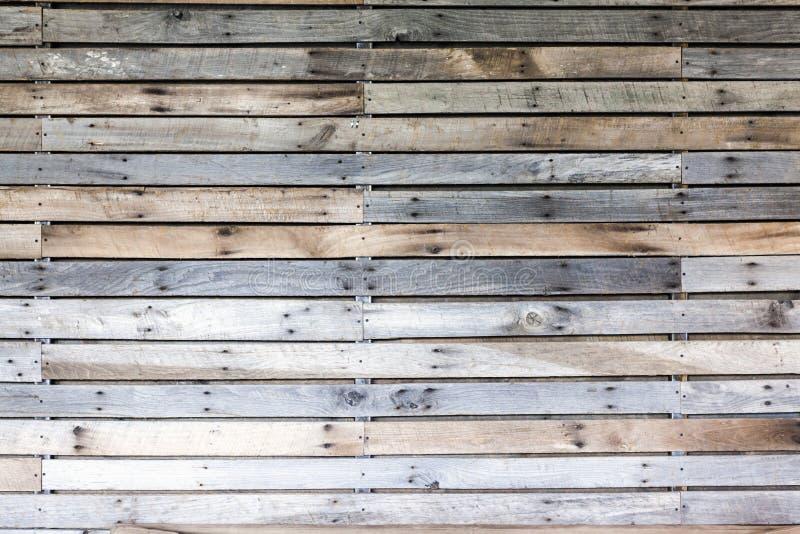Design de interiores - parede de madeira fotografia de stock royalty free