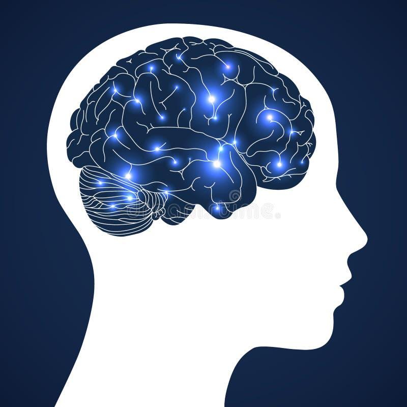 Design der menschlichen Intelligenz im aktiven Gehirn auf blauem Hintergrund stockfotografie