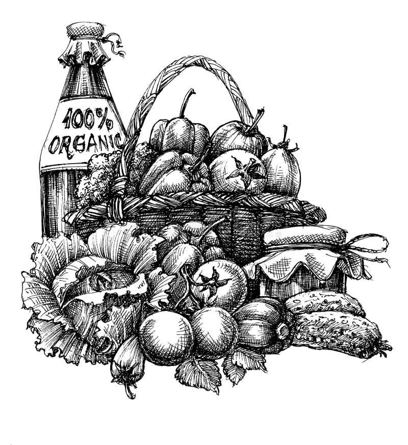 Design des biologischen Lebensmittels vektor abbildung