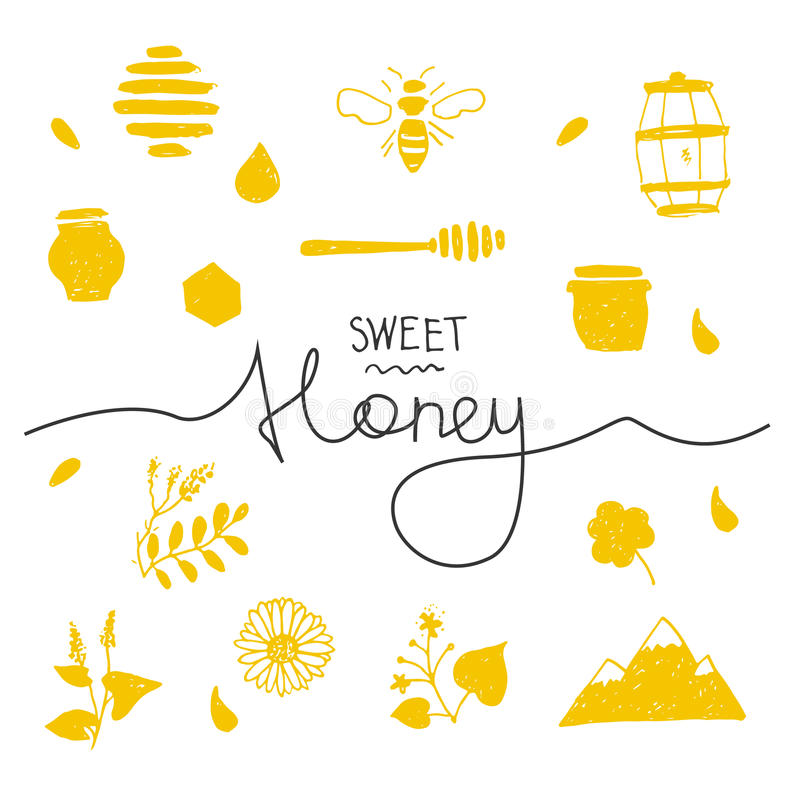 Design elements honey. Design elements honey in hand drawn style with lettering vector illustration