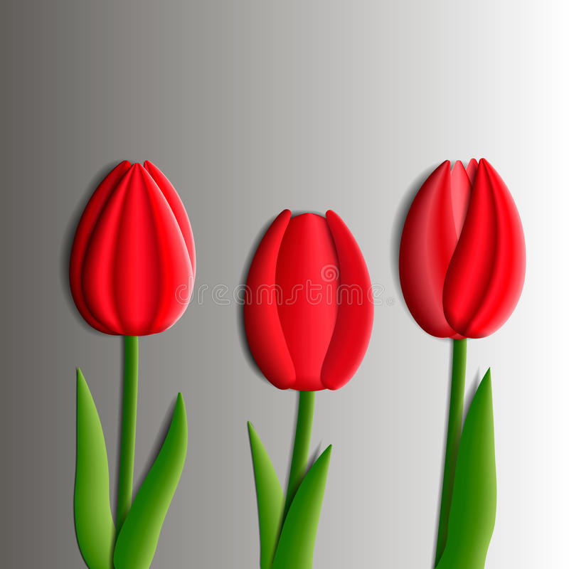 Design elements - set of red tulips flowers 3D. royalty free illustration