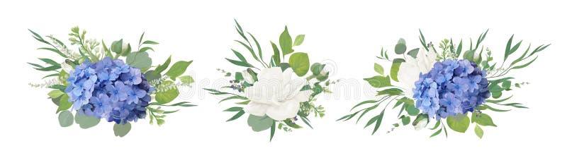 Design för blom- bukett för vektor: blå vanlig hortensiablomma, trädgårds- peon stock illustrationer