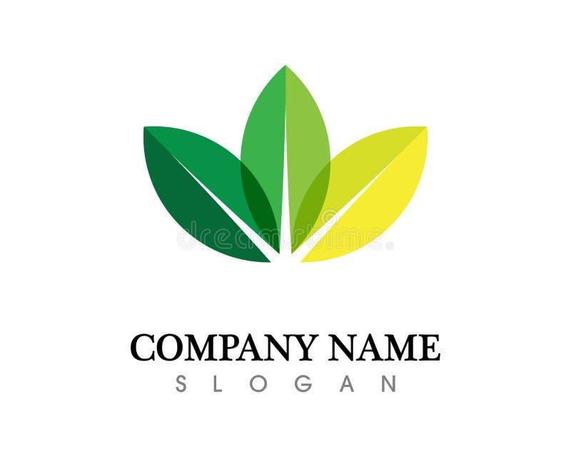 Design för logo för trädbladvektor, eco-vänskapsmatch begrepp