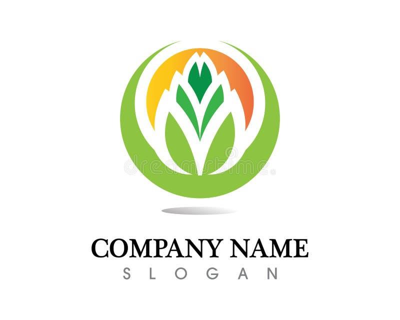 Design för logo för trädbladvektor, eco-vänskapsmatch begrepp arkivbild