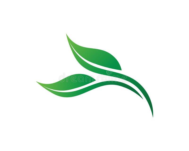 Design för logo för trädbladvektor, eco-vänskapsmatch begrepp vektor illustrationer