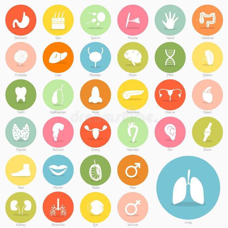 Design för skugga för kroppsymbolskortslutning royaltyfri illustrationer