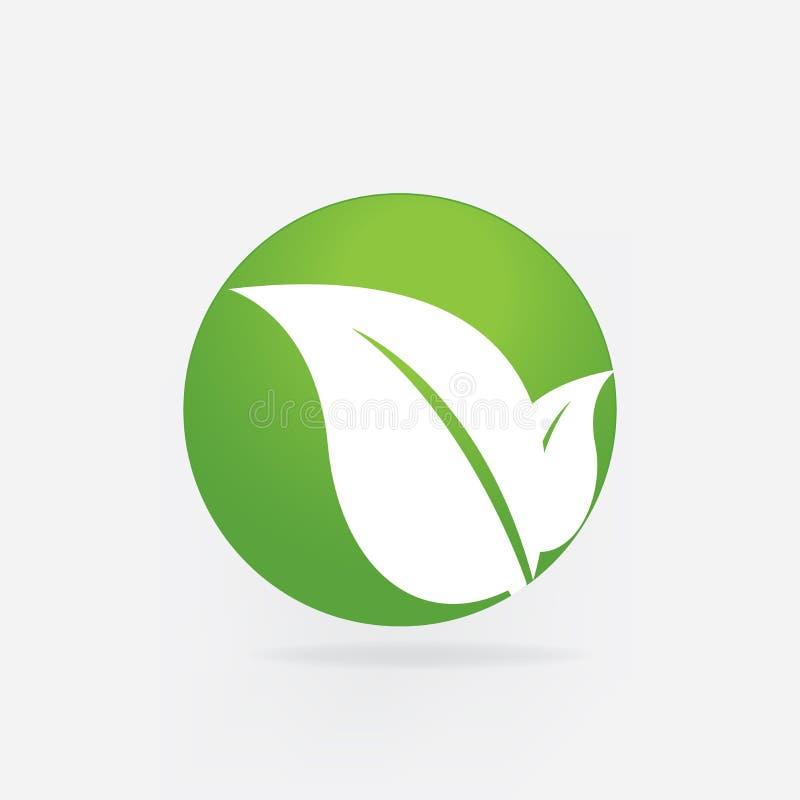 Design för vektor för symbol för kort för affär för identitet för natur för logoblad vård- vektor illustrationer