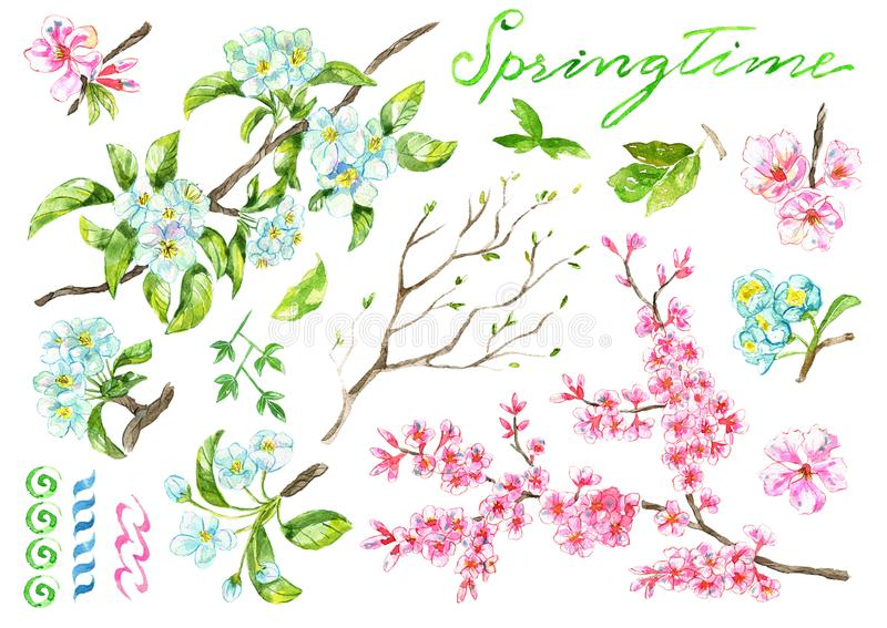 Design set with blooming apple and cherry tree branches, spring flowers royalty free illustration