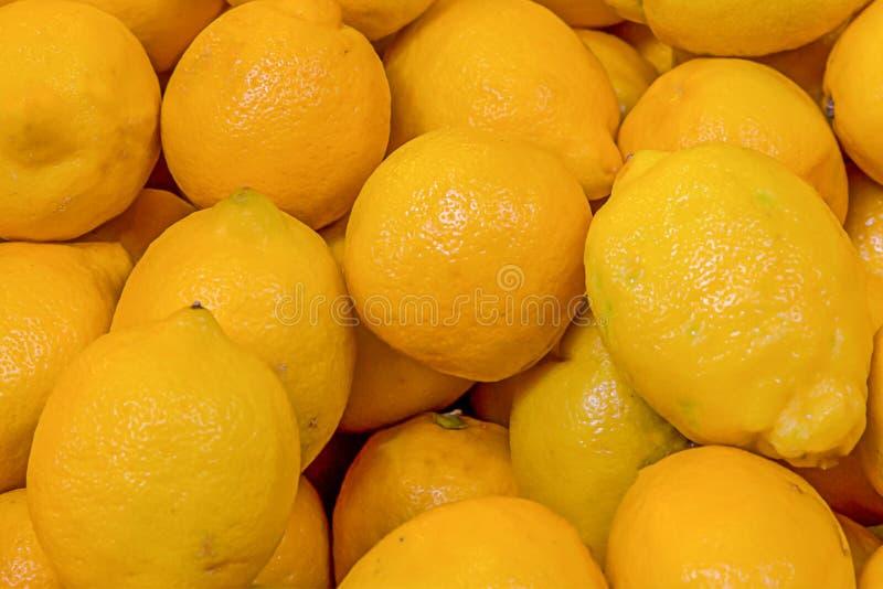 Designen för grunden för frukt för modellen för den hela citronen för bakgrundsgruppguling förbereder den ljusa doftande sura vit royaltyfria foton
