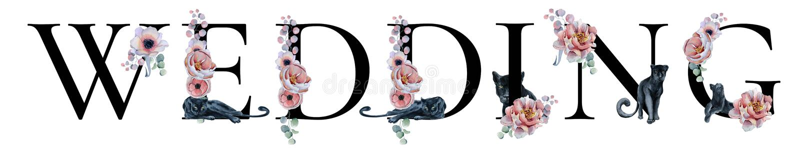 Designen för ordet för vattenfärgen för bröllopbokstävertecknet med blom- buketter och svarta pantrar räcker den utdragna typogra fotografering för bildbyråer