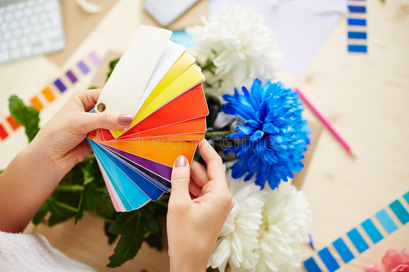 Designer with color sampler. Close-up shot of female hands choosing necessary color from sampler, messy office desk with pretty bouquet of chrysanthemums on stock photos
