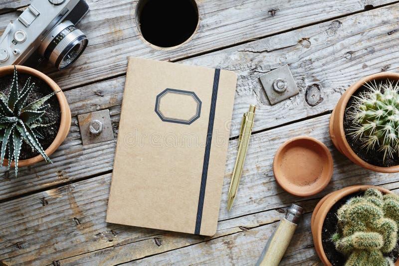 Designer desk industrial wood analog camera cacti and retro notebook. Urban decoration vintage lifestyle royalty free stock photos