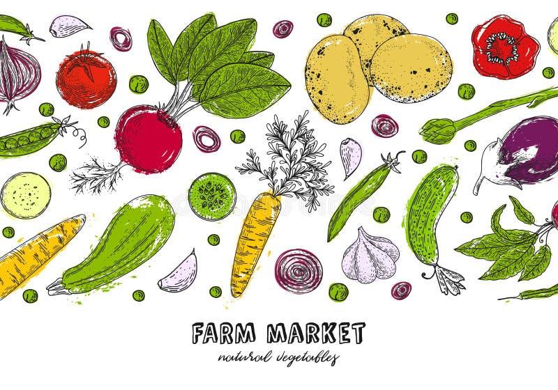 Designschablone des biologischen Lebensmittels Frisches vegetables Ausführliche vegetarische Lebensmittelzeichnung Bauernhofmarkt stock abbildung