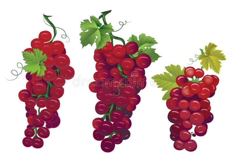 Designvektorelemente der roten Trauben stock abbildung